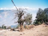 Ganesh Himal (7)
